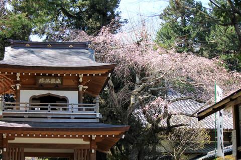 Jyochijiromon130321
