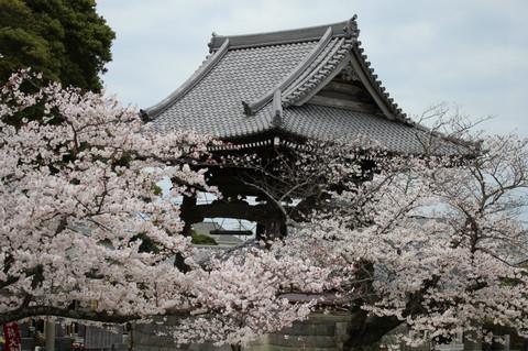 Komyojishoro130326