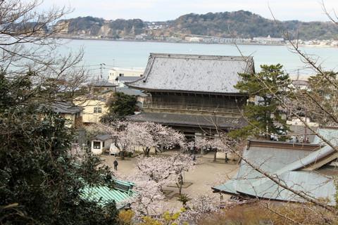 Komyojiurayama130326