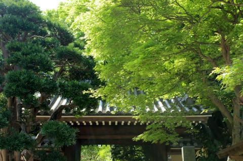 Hokokujisanmon130418