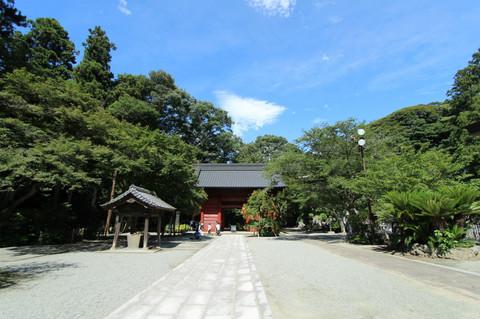 Myohonjinozenkazura1307072