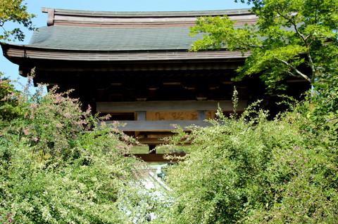 Kaizojihagi130920