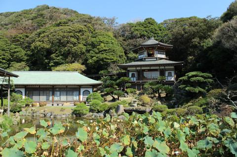 Komyoji1310145