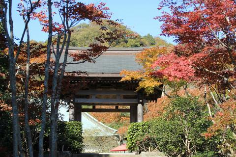 Kaizojikoyo131121