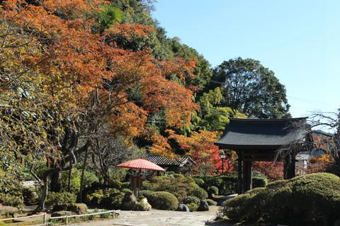 Kaizojikoyo1311212