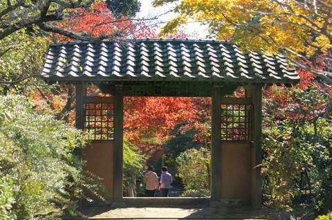 Kaizojikoyo1311214