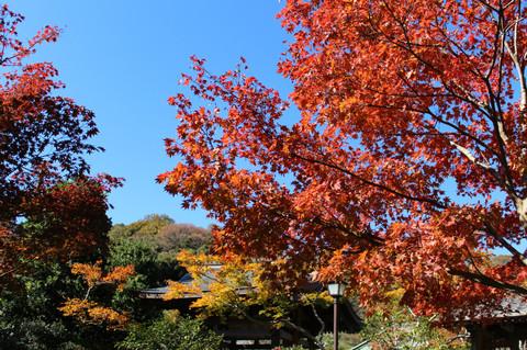 Kaizojikoyo1311215