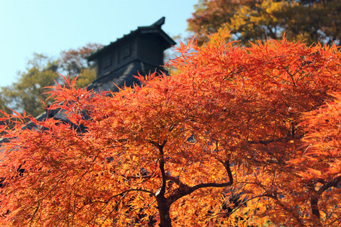 Kosokujikoyo131122