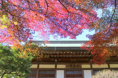 Hokokujkoyo131129