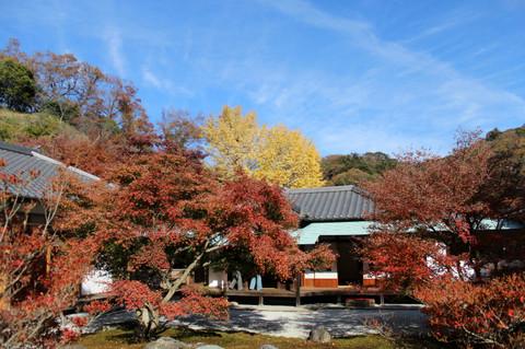 Chojujikoyo1312018