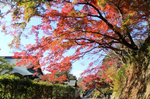 Kenchojikoyo1312013