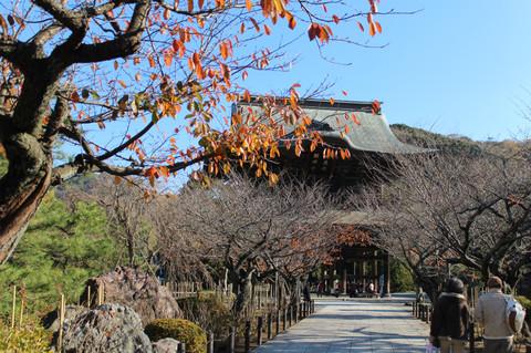Kenchojisanmon131201