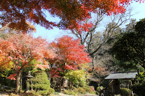 Jochijikoyo131204
