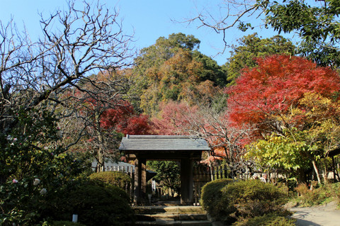 Jochijikoyo1312043