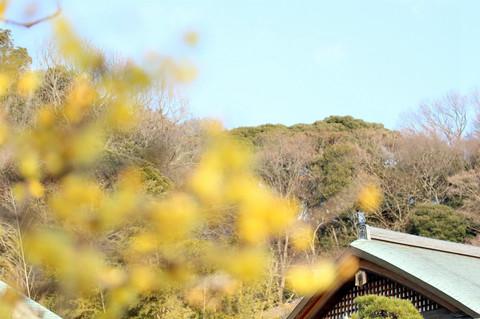 Jomyojirobai1401212