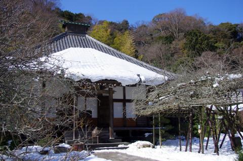 Kosokuji140209