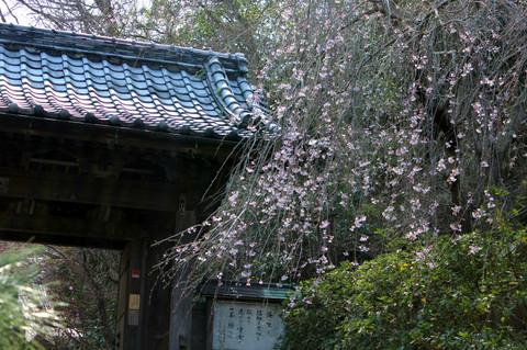 Ankokuronjisanmon140328