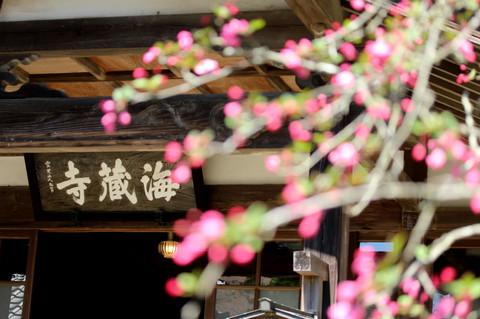 Kaizojikaido1403312