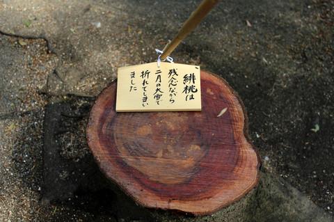 Goryojinjahimomo140401