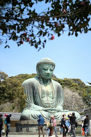 Kotokuintubaki140401