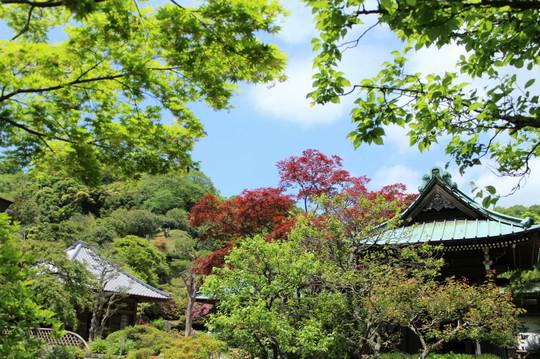 Kaizojisinryoku1405072