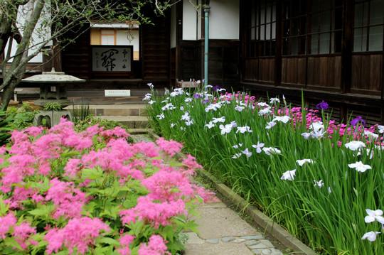 Kaizojihanashobu140610