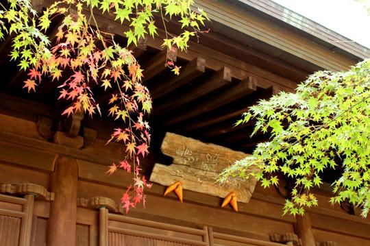 Choshojikoyo141107