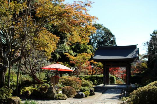 Kaizojikoyo141119