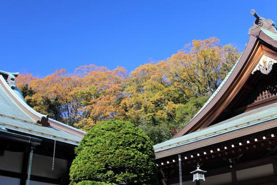 Hokokujikoyo1412022