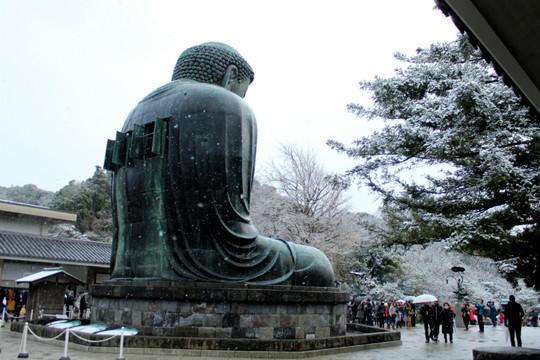 Daibutu1501012