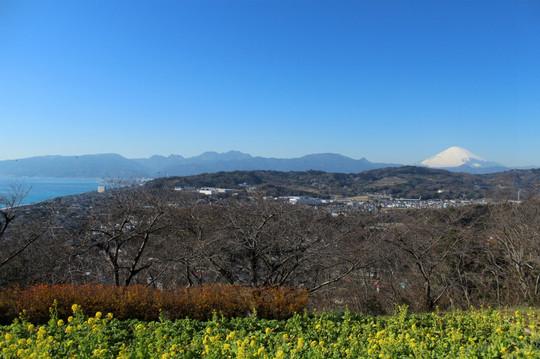 Adumayama1501098