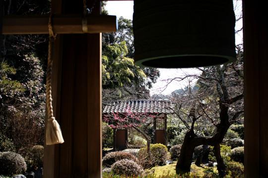 Kaizojikobai1502102