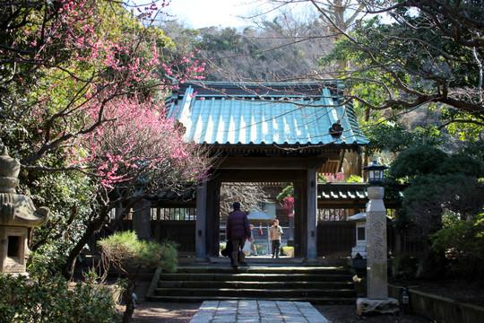 Joryujisanmon150219