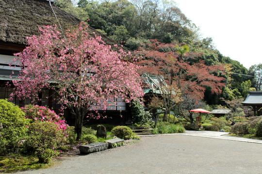 Kaizojikaido150409