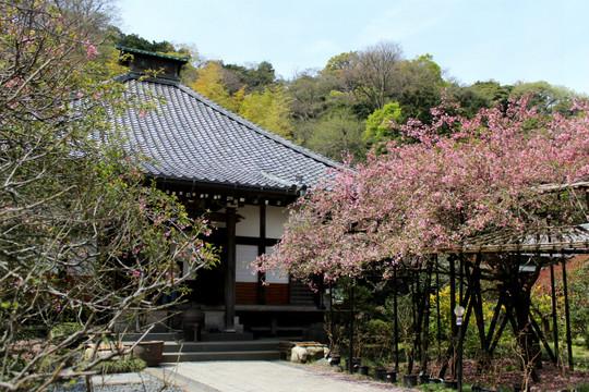 Kosokujikaido150409