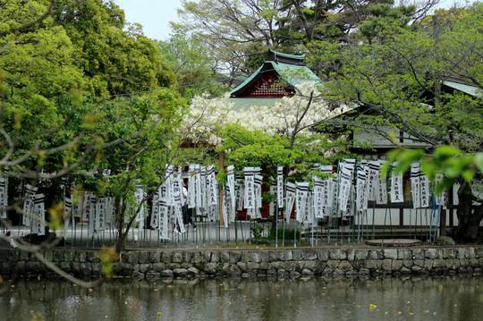 Hachimangufuji150422
