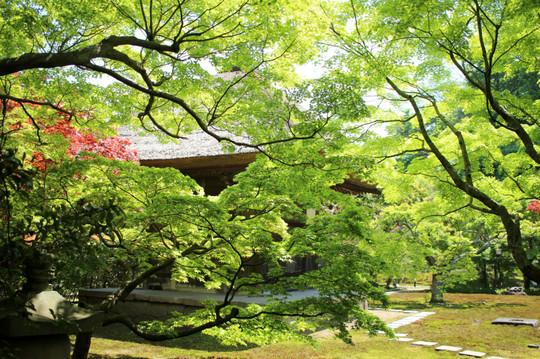 Chojujikannondo1504264_2