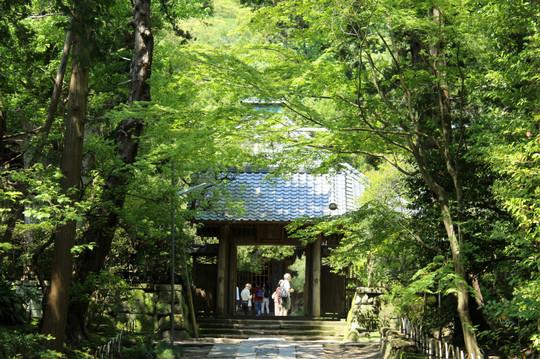 Jufukuji1505026