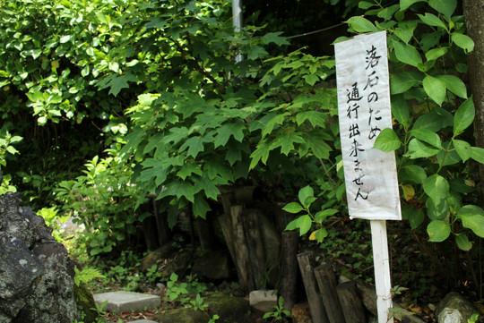Ajisaikomichi150523