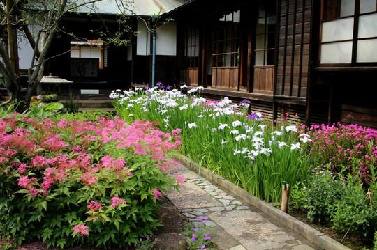Kaizojihanashobu150606
